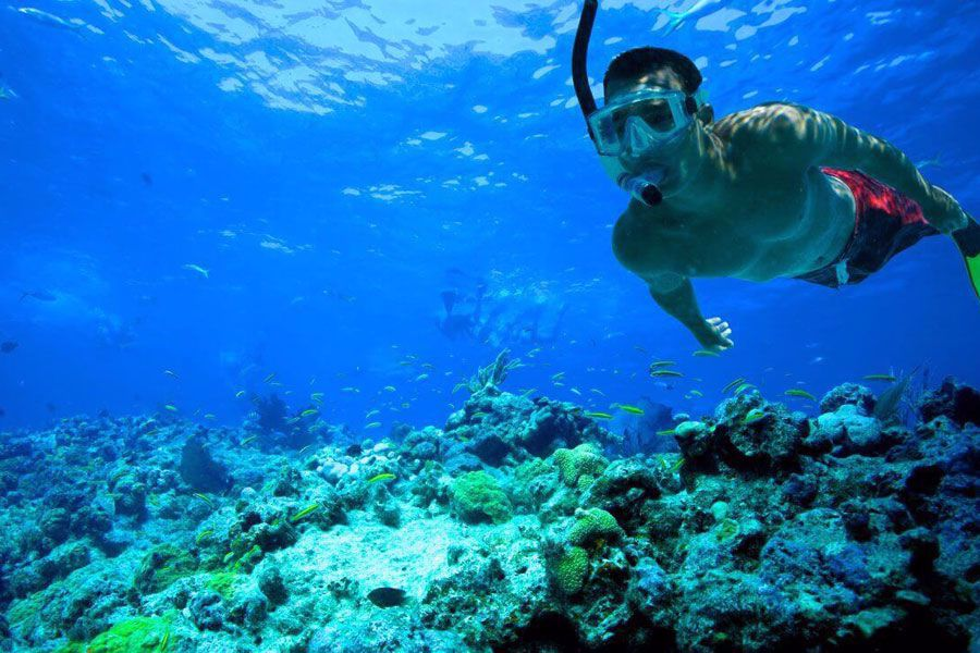 Snorkel the beautiful National Wildlife Refuge