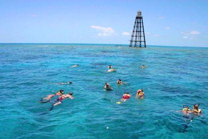 Reef and Ritas Snorkeling Trip