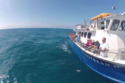 Gulfstream IV Key West's Premier Fishing Boat