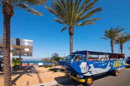 See San Diego by land and by sea