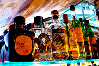 Taste Differences between 6 different agaves